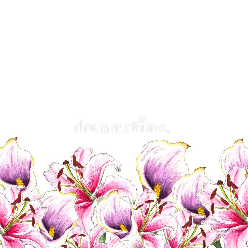 Watercolor callas and lilies. Floral background. Flower pattern. Tropical plants.Isolated on white background stock images