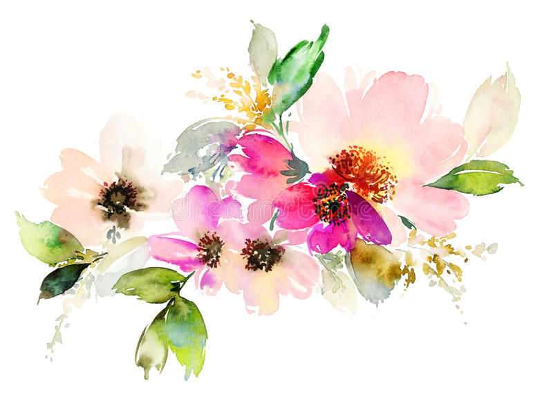 Flowers watercolor illustration. royalty free stock photo