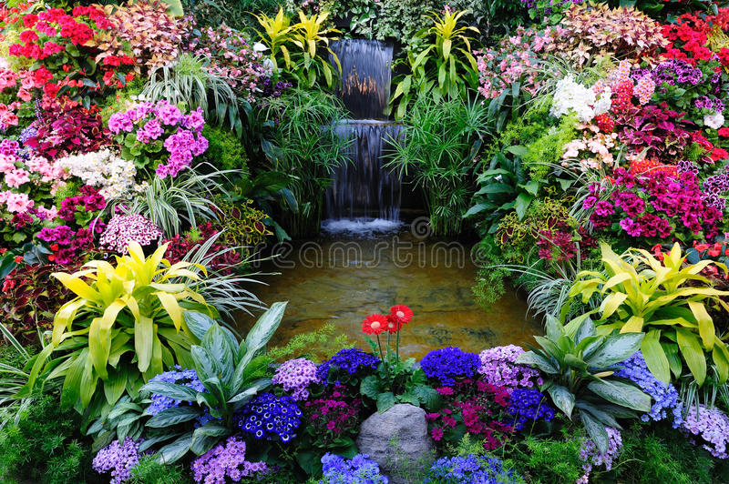 Flowers and waterfall royalty free stock image