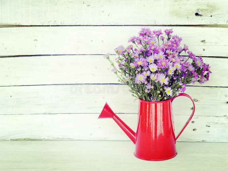 Flowers and watering can royalty free stock photos