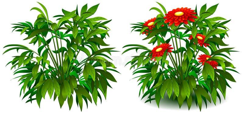 Flowers on white royalty free illustration