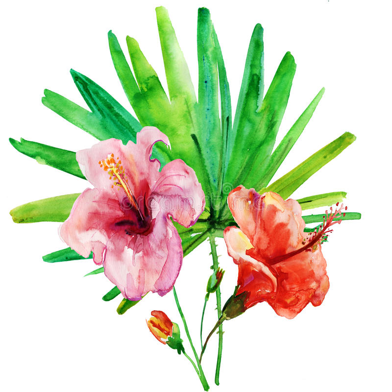Flowers on a white background. painting stock images