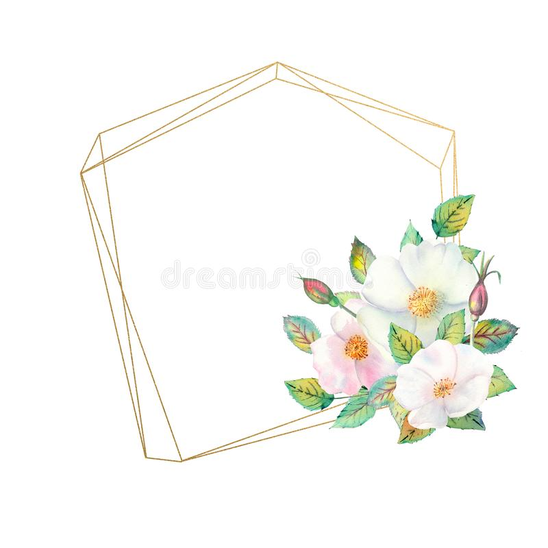 Flowers of white rose hips, red fruits, green leaves, the composition in a geometric Golden frame. Flower poster, invitation. vector illustration