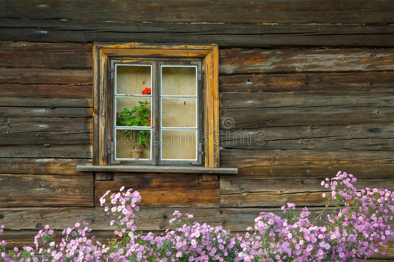 Download Flowers in window stock photo. Image of detail, history - 21755818