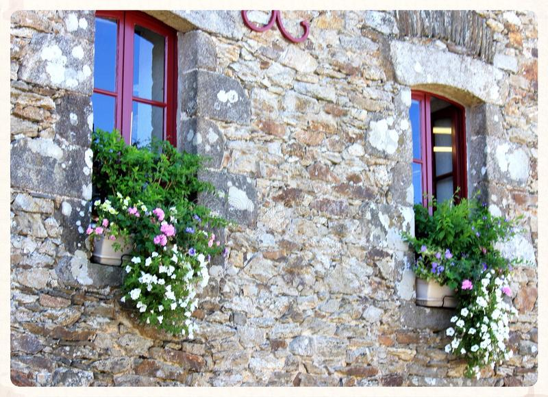 Flowers in window boxes stock images