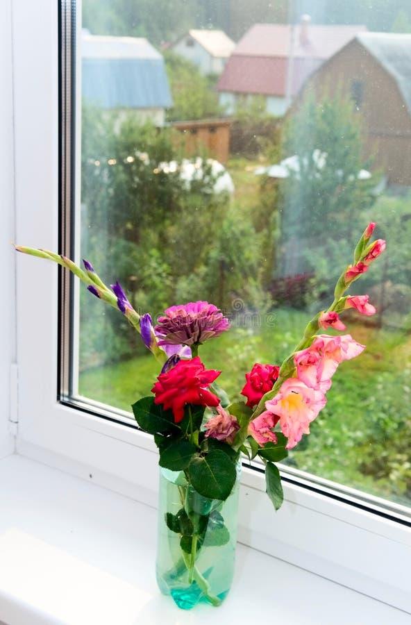 Download Flowers on windowsill stock photo. Image of image, blossom - 16089070
