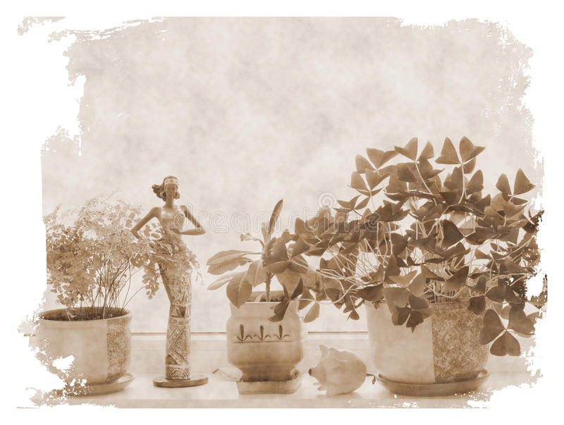 Download Flowers at windowsill stock photo. Image of different - 32506654