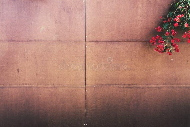 Flowers On Wood Paneled Fence Free Public Domain Cc0 Image