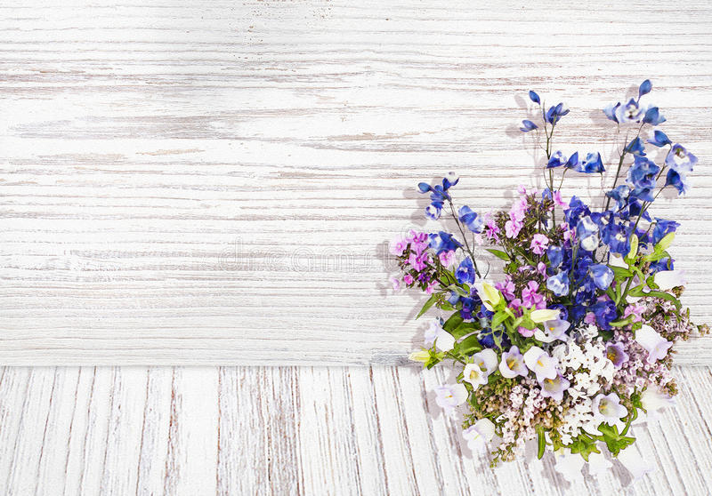 Flowers on wood texture background watercolor style royalty free illustration