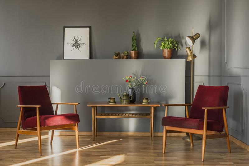Flowers on wooden table between dark red armchairs in grey living room interior with poster. Real photo stock image