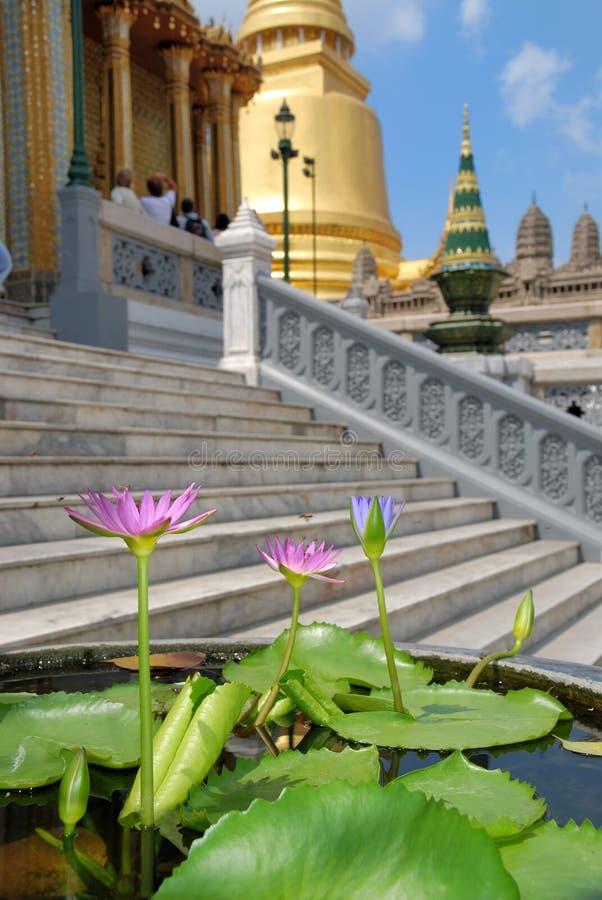 flowerses fnd świątyni zdjęcia royalty free