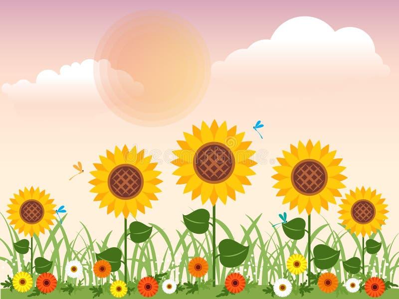 Flowery λιβάδι με τις μαργαρίτες, τους ηλίανθους και τη λιβελλούλη στο θερινό διανυσματικό σχέδιο ελεύθερη απεικόνιση δικαιώματος