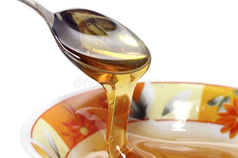 flowery μέλι στοκ φωτογραφίες με δικαίωμα ελεύθερης χρήσης