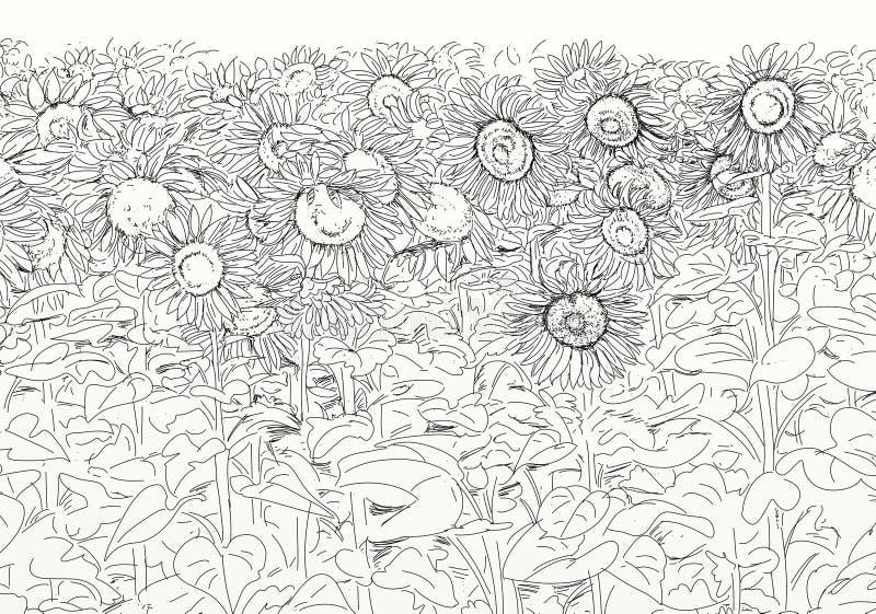 Flowery τομέας με τους ηλίανθους ελεύθερη απεικόνιση δικαιώματος