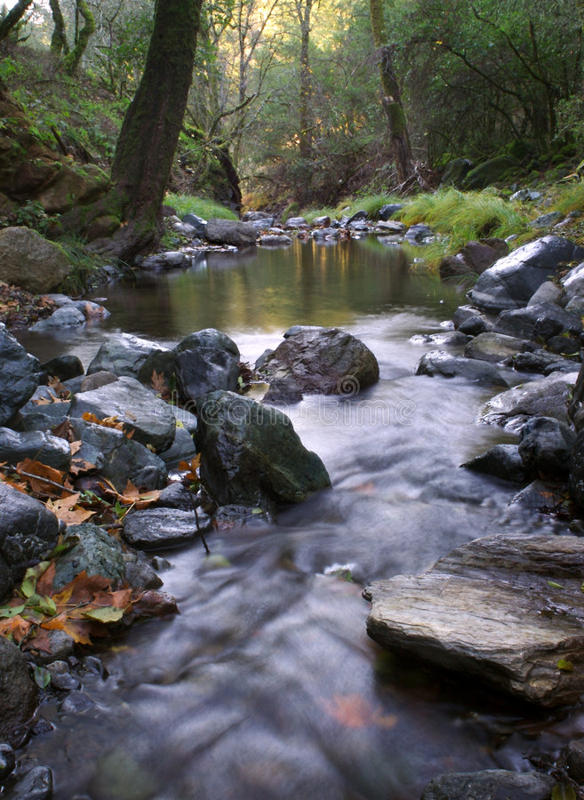 Download Flowing Creek stock image. Image of scenery, natural, landscape - 2054337
