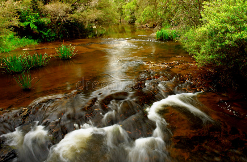 Flowing Creek royalty free stock photography