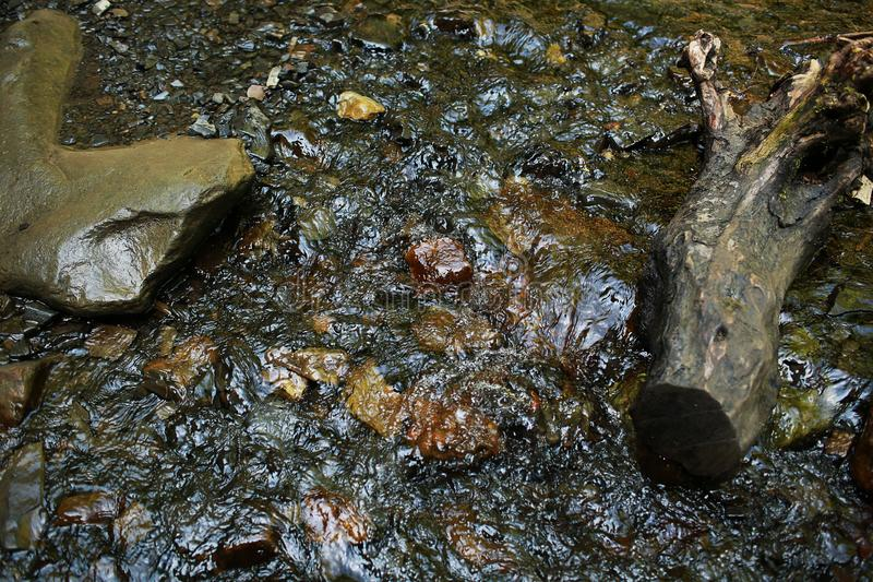 Flowing mountain stream with transparent water and stones on bottom royalty free stock images