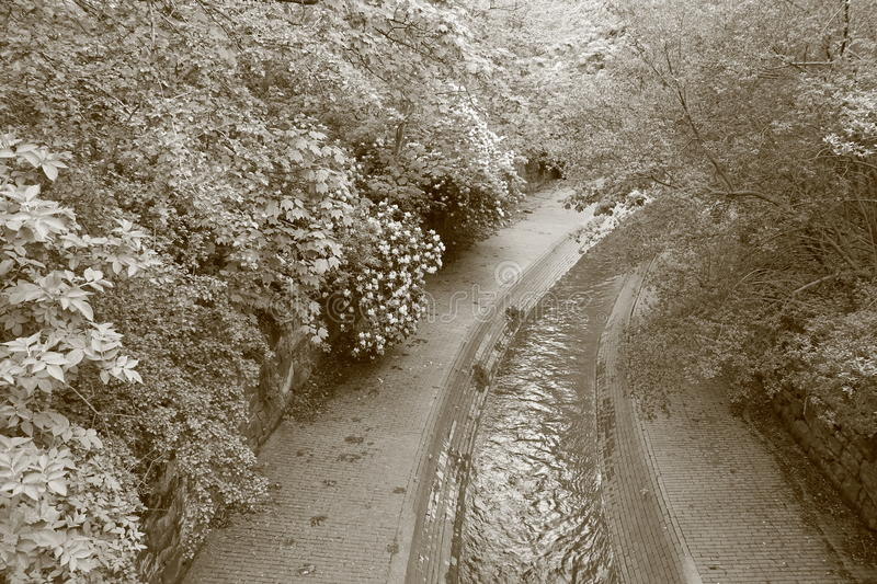 Download Flowing River With Footpaths And Canopy Of Trees Stock Image - Image: 67115017