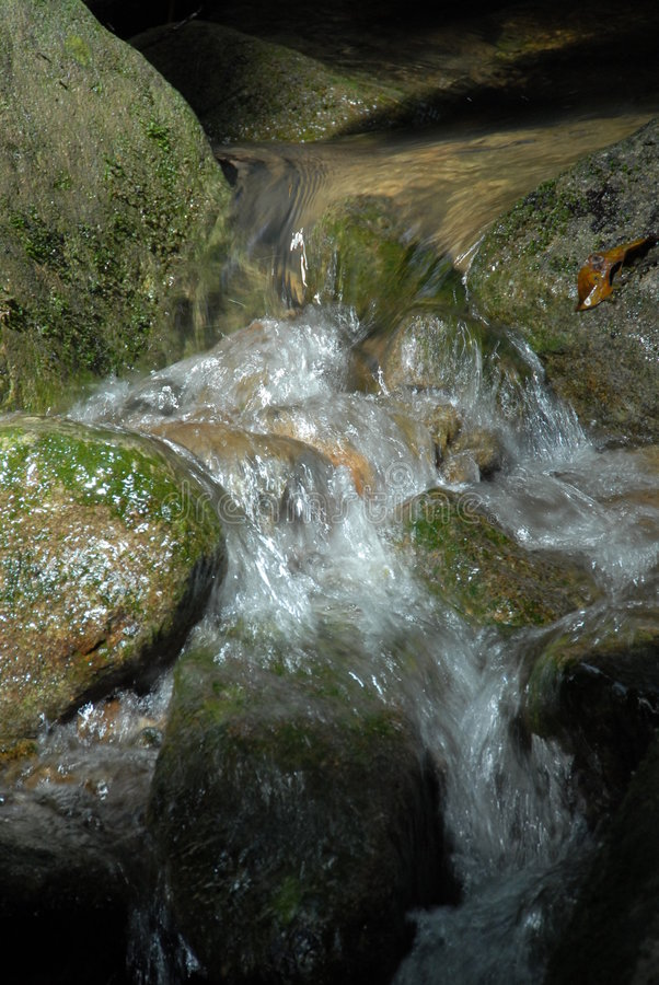 A flowing stream stock photo