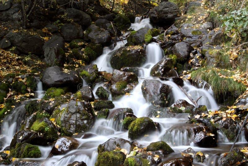 Download Flowing Stream stock image. Image of stream, rock, waterfalls - 22735673