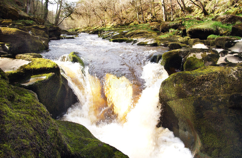 The flowing Stream stock image