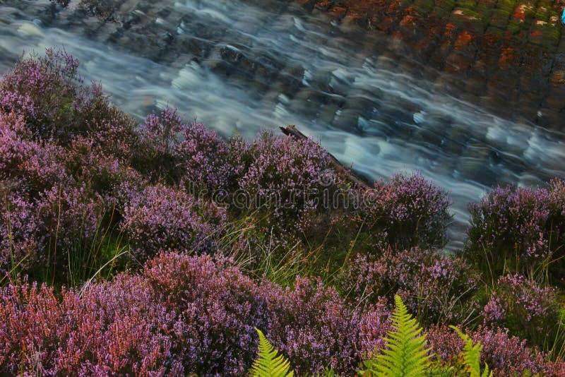 Flowing waters Langsett reservoir royalty free stock image