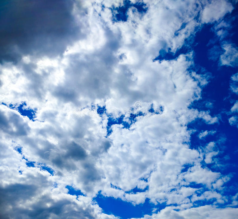 Fluff and blue sky stock image