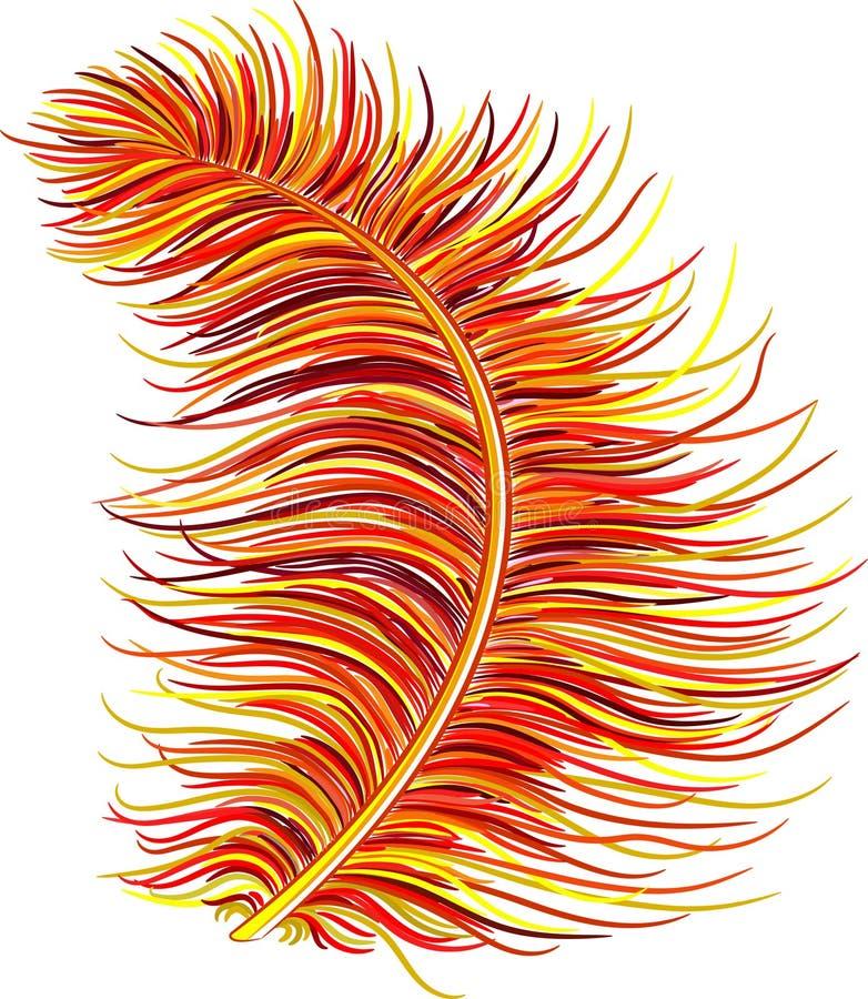 Fluffig fjäder ner vektor illustrationer