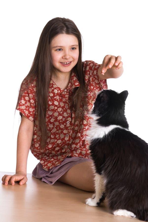 fluffig flicka för katt little fotografering för bildbyråer