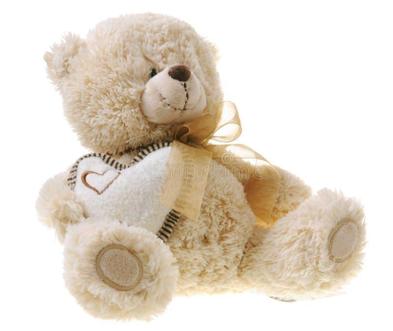 fluffig nalle för björn royaltyfria bilder