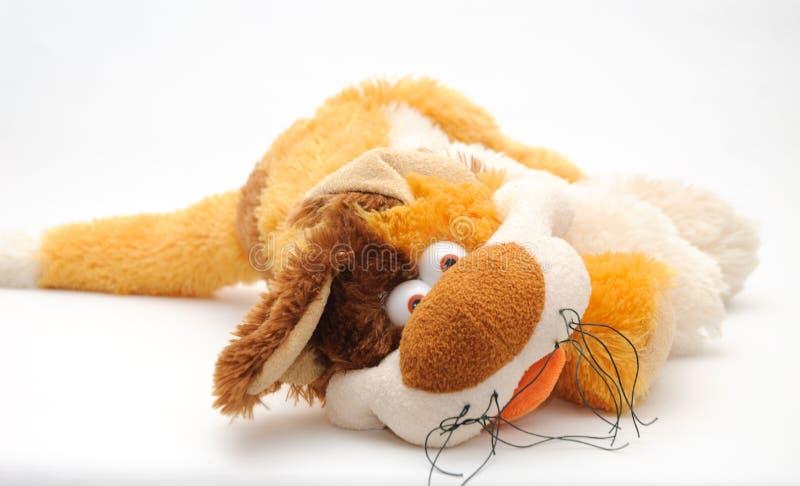 Fluffig toy 019 royaltyfria bilder