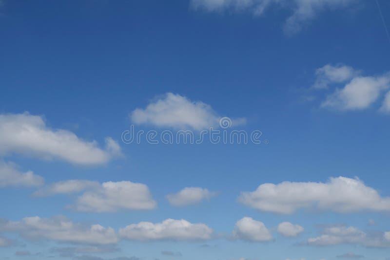 Fluffig vit fördunklar i en solig blå himmel fotografering för bildbyråer