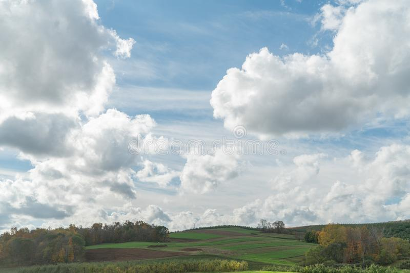 Fluffy Clouds Float Over A Rolling Grassy Field royalty free stock photos