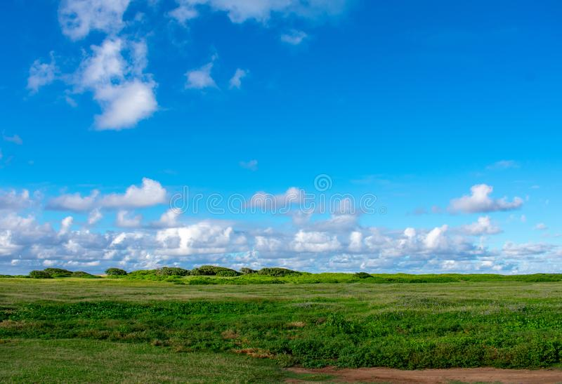 Blue Sky and Green Meadow royalty free stock photography