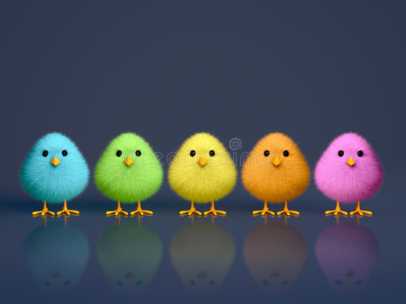 Fluffy Colorful Chicks. On a dark reflective background with copy space (3D render) royalty free illustration
