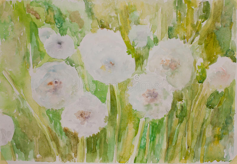 Fluffy dandelion artist paint. Hand drawn green watercolour painting stock illustration