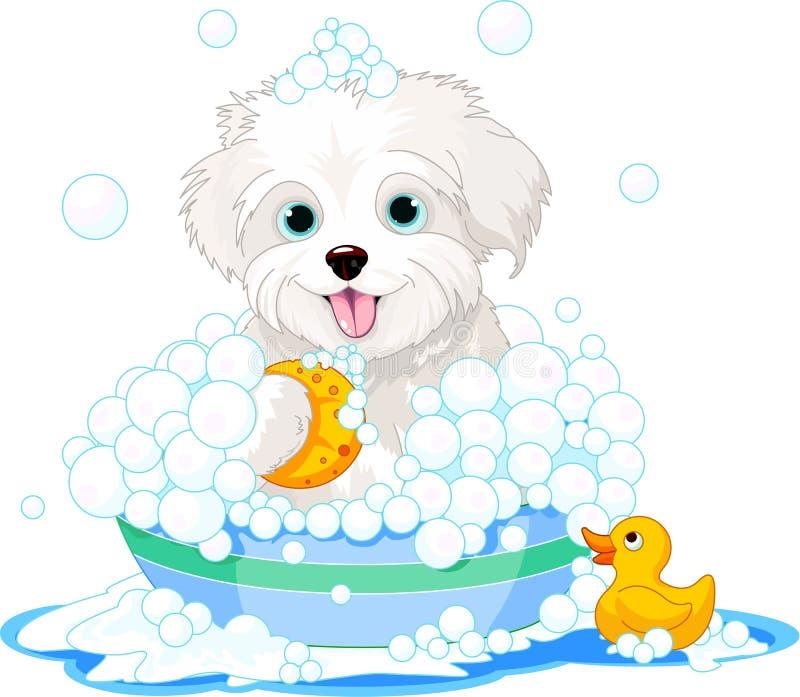 Fluffy dog having a bath royalty free illustration