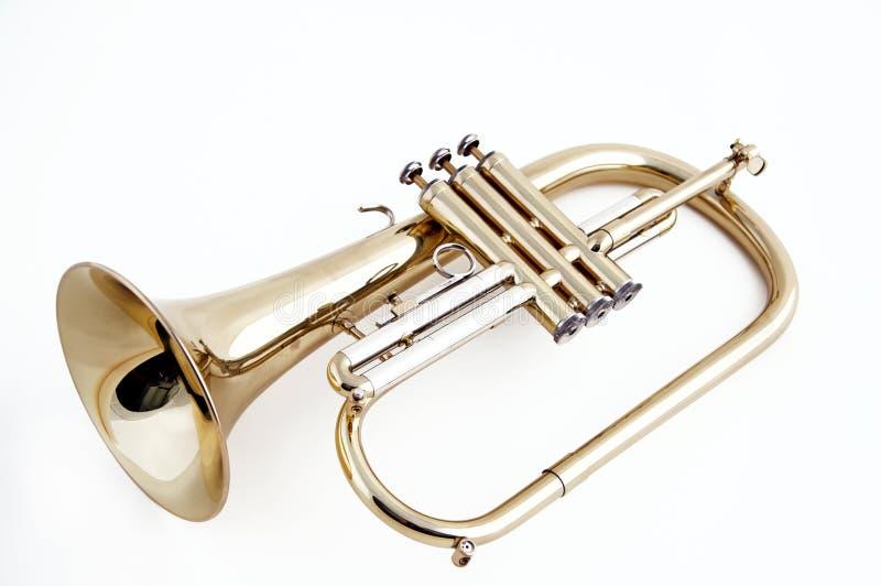 Flugelhorn da trombeta isolado no branco fotos de stock royalty free