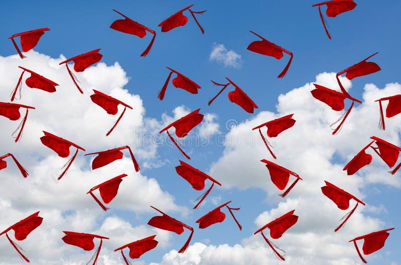 Fluggürtelmützen für Rotgradkappen im Himmel lizenzfreie stockfotografie