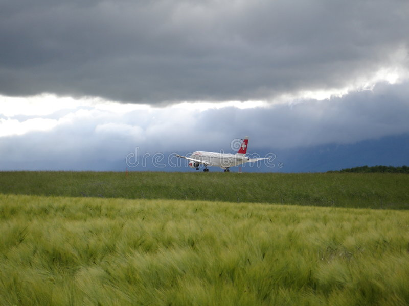 Flugzeug im Naturplan lizenzfreie stockfotos