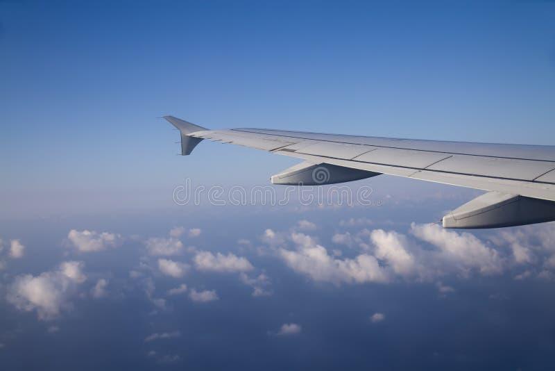Flugzeugflügel lizenzfreie stockfotos