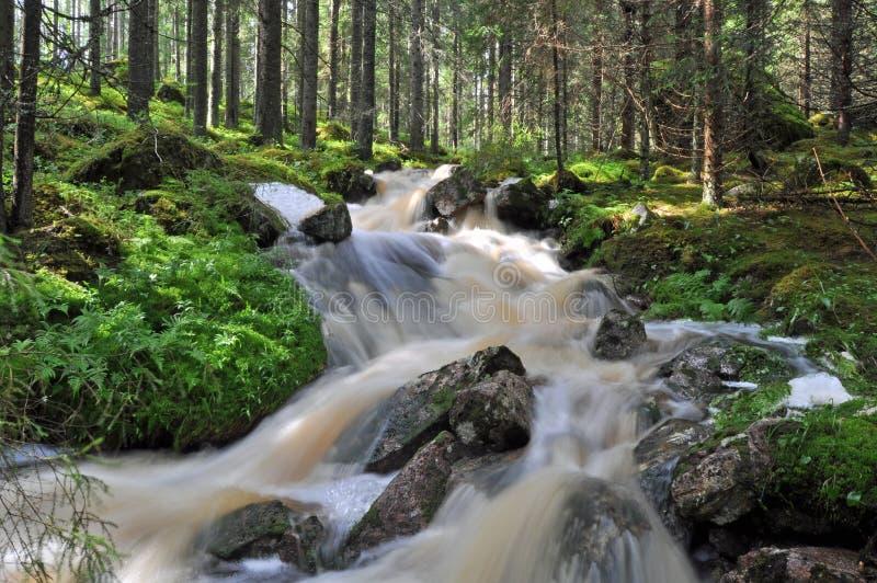 Fluindo a água foto de stock