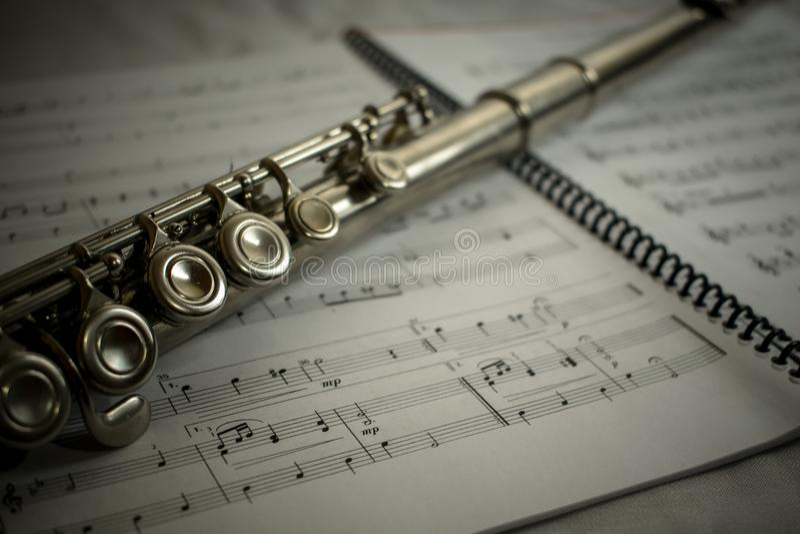 Fluit 2 stock foto