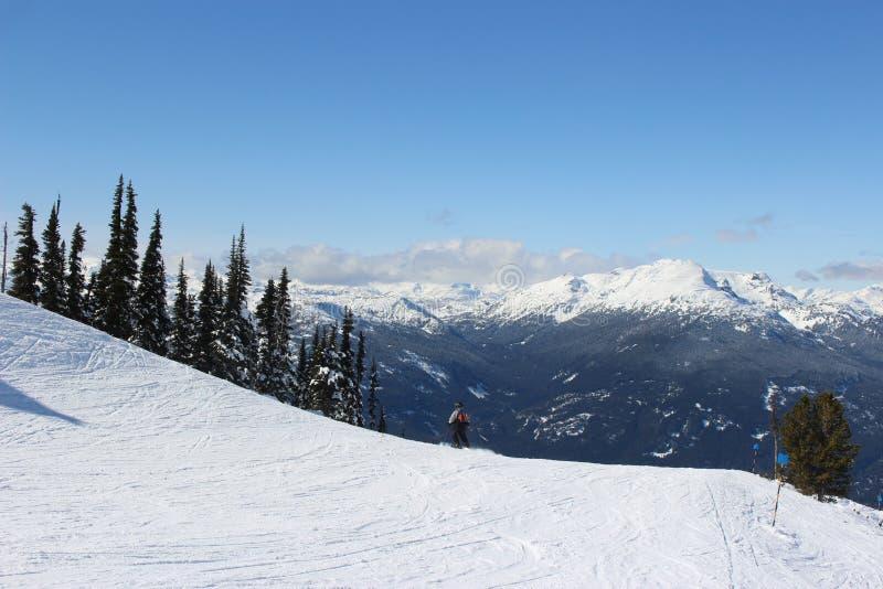 Fluiter - Canada royalty-vrije stock afbeelding