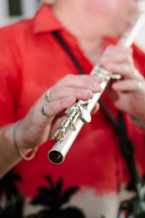 Fluitist het spelen op fluit royalty-vrije stock fotografie