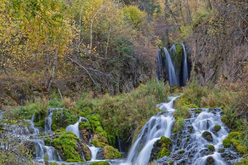 Flujo de caídas de Roughlack, Spearfish Canyono imagen de archivo libre de regalías