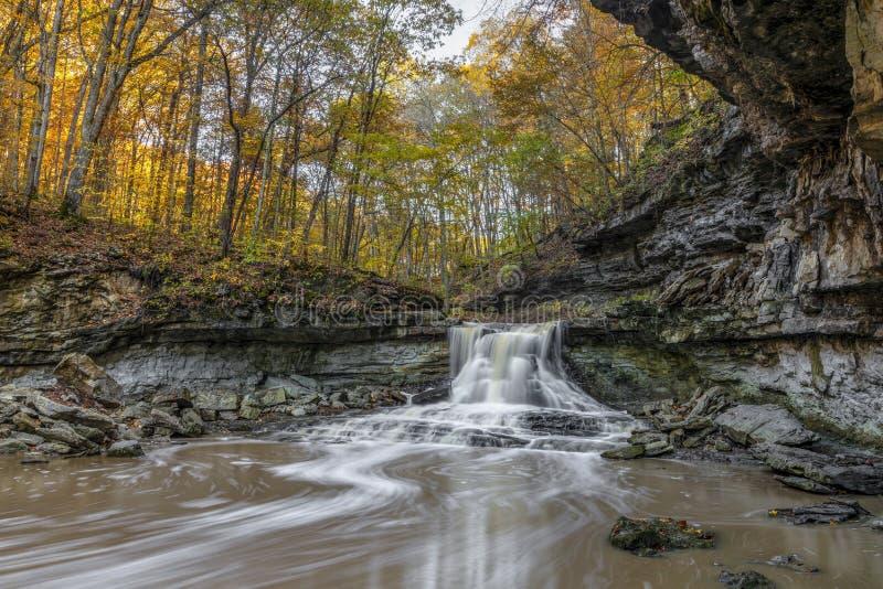 Flujo de otoño de la crema McCormicks imagen de archivo libre de regalías