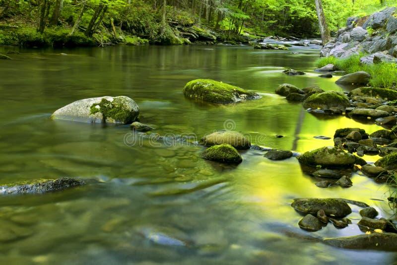 Flujo del río en TN, montañas ahumadas foto de archivo