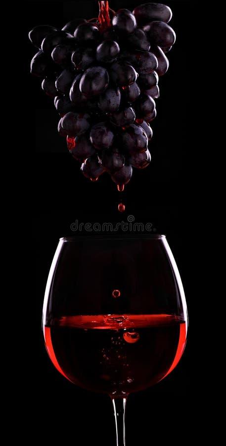 Flujo del vino tinto de un racimo de uvas a la copa de vino Fondo negro Vino rojo Tiro de la publicidad imagen de archivo libre de regalías