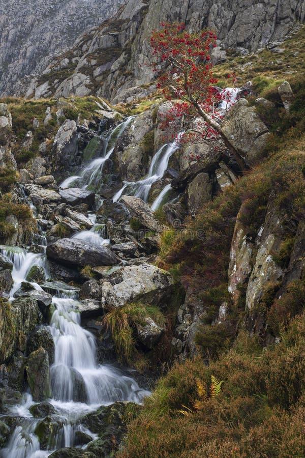 Flujo desde Llyn Bochlwyd imagen de archivo
